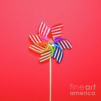 Multicolored pinwheel against red background - Minimal flat lay  by Aleksandar Mijatovic