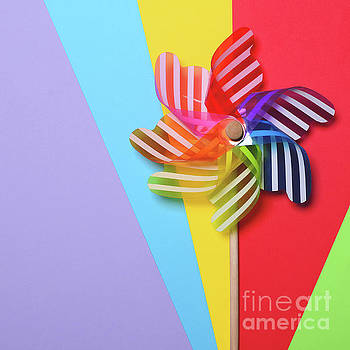 Multicolored pinwheel on colorul backgrounds - Minimal design by Aleksandar Mijatovic