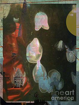 Multidimensional Jellies by Robert Ball