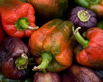 Multiple Colored Peppers by John Gilroy