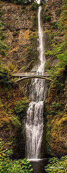 Claudia Abbott - Multnomah Falls