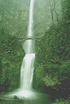 Multnomah Falls by Floyd Bond