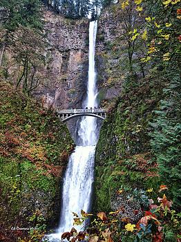 Multnomah Falls in Autumn by Edward Coumou