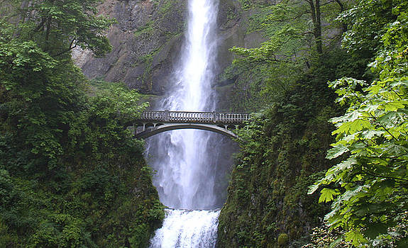Multnomah Falls WF1051A by Mary Gaines