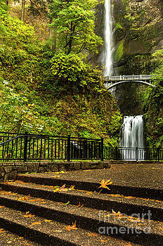 Multnomah Falls,Oregon by Sal Ahmed