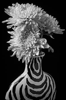 Mums In Striiped Vase by Garry Gay