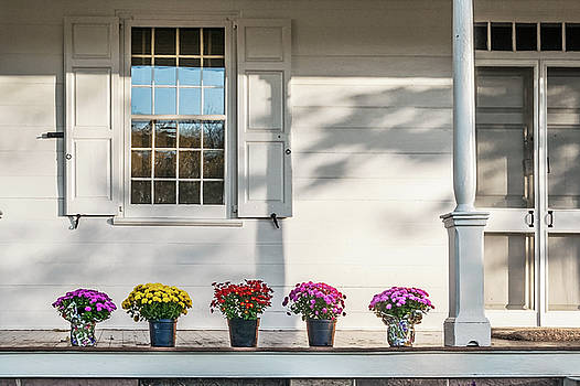 Mums on Porch  by Andrew Kazmierski