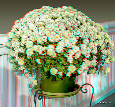 Mums On The Porch - Use Red-Cyan 3D Glasses by Brian Wallace