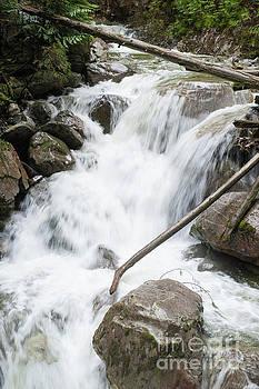 Murdo Creek by Rod Wiens