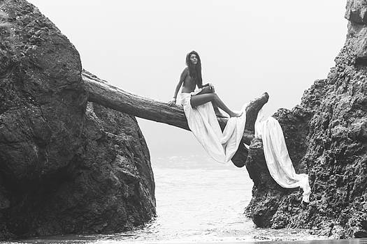 Muse in Foggy Cove by Andrea Borden