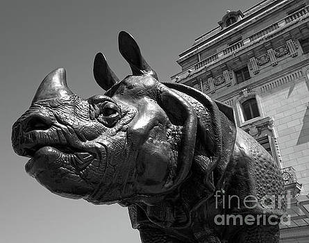 Gregory Dyer - Musee d Orsay Rhino Statue