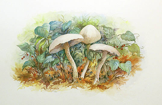 Mushrooms and Berries by Lois Mountz