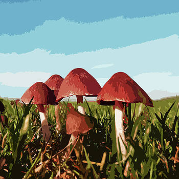 James Hill - Mushrooms in Autumn