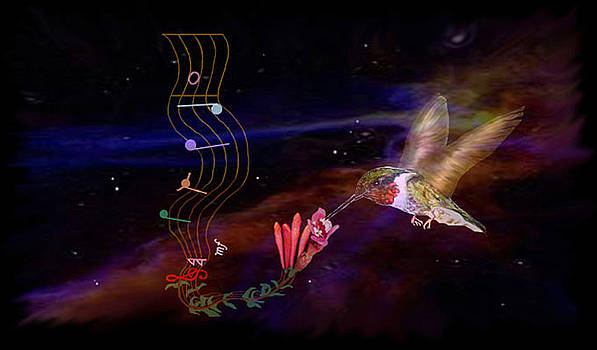 Music of the Hummingbird by Bucko Productions Photography
