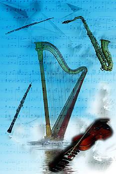 Musical Instruments by Angel Jesus De la Fuente
