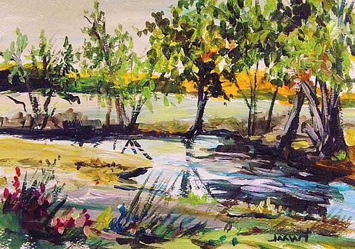 Musing- Meadow Stream by John Williams