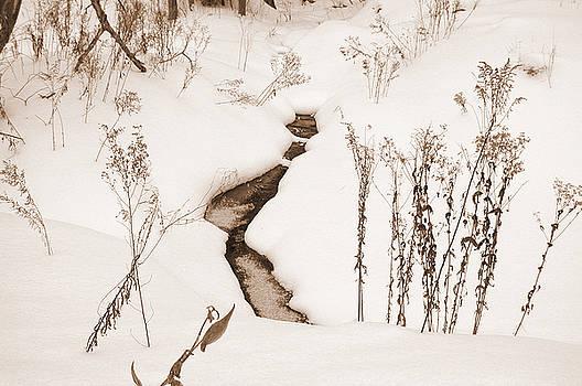 Kathi Shotwell - Muskoka Winter 1
