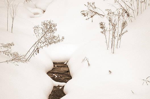 Kathi Shotwell - Muskoka Winter 2