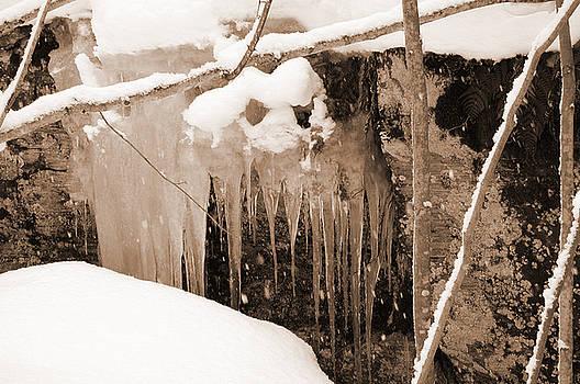 Kathi Shotwell - Muskoka Winter 5