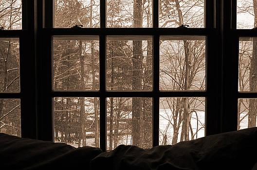 Kathi Shotwell - Muskoka Winter 7