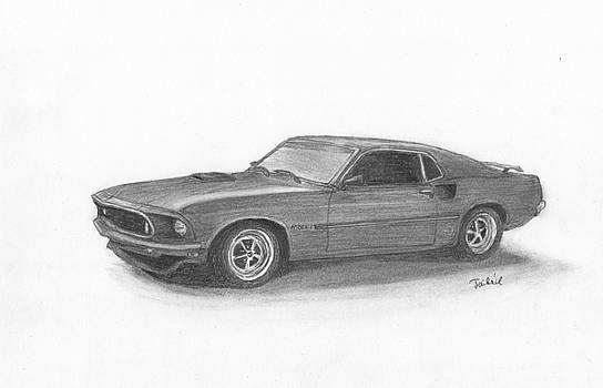 Mustang car by Kokas Art