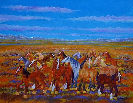 Mustangs by Bob Craig
