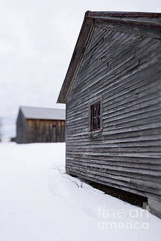 Musterfield Farm North Sutton NH Old Buildings in the snow by Edward Fielding