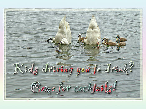 Mother Nature - Mute Swan Family - Invitation to Cocktail Party