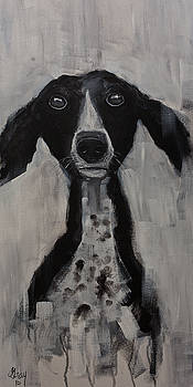 Mutts Original Dog Portrait Painting by Gray Artus