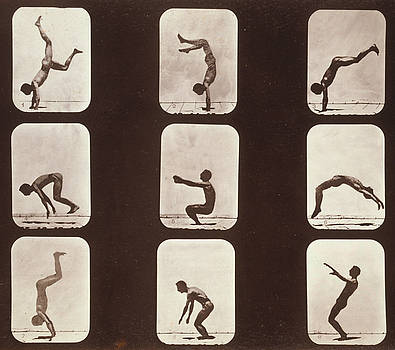 Photo Researchers - Muybridge Locomotion Back Hand Spring