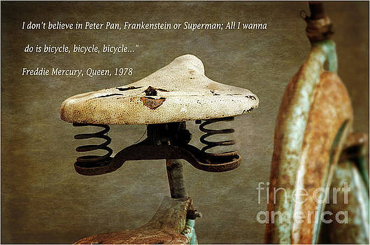 My Bicycle by Norma Warden