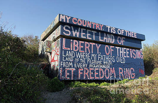 My Country Tis... by Scott Evers