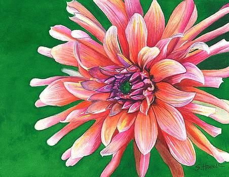 My Dahlia by Sandi Howell
