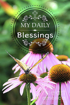 My Daily Blessings by Jean Plout