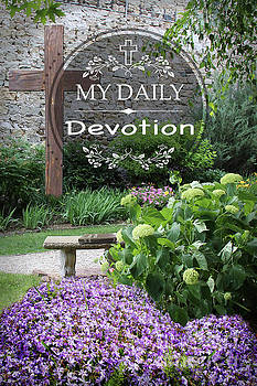 My Daily Devotions by Jean Plout