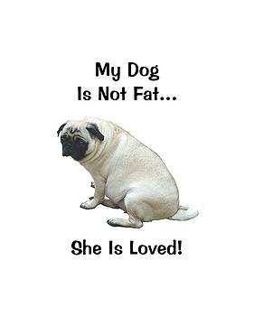 My Dog is Not Fat Pug by Patricia Barmatz