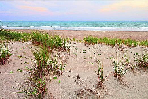 My Favorite Beach by Norman Drake