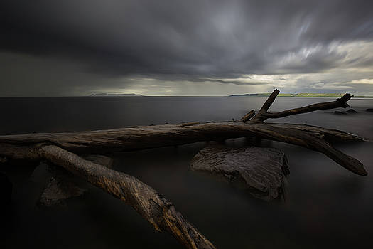 My Favourite Piece of Driftwood, the Giant and A Thuderstorm by Jakub Sisak