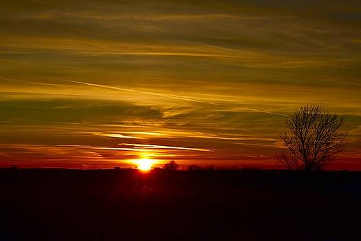 My First 2016 Sunset Photo by Dacia Doroff