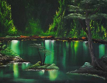 My Fishing Pond by John Johnson