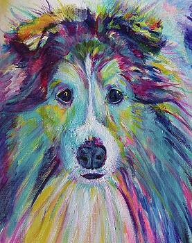 My friend the Sheltie Dog by Karin McCombe Jones