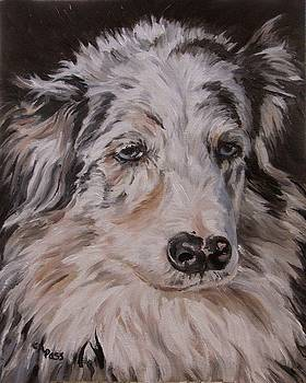 My Funny Valentine - Dog Portrait by Cheryl Pass