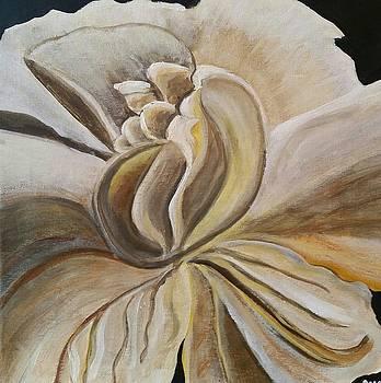 My Gardenia  by Carol Duarte