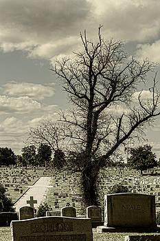 Sharon Popek - My Grave Kingdom