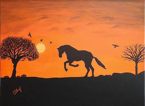 My Happy Horse by Catherine Velardo