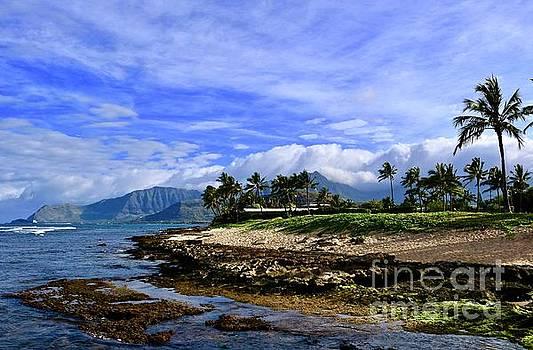 My Hawaii Morning by Craig Wood