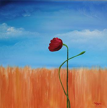 My Last Poppy by John Johnson