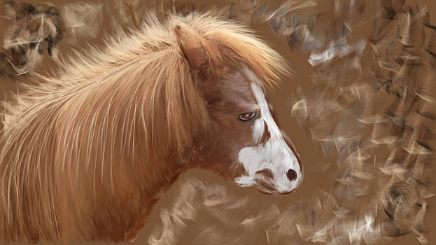My Little Pony by Lady Ex