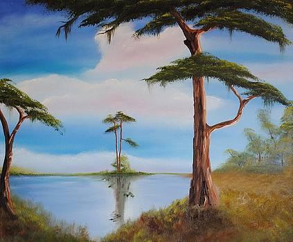 My Little Swamp Land by John Johnson