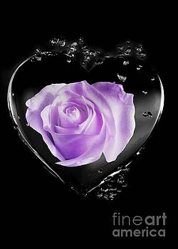 Rachel Hannah - My Love